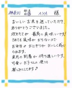 神奈川県sAYA.jpg2