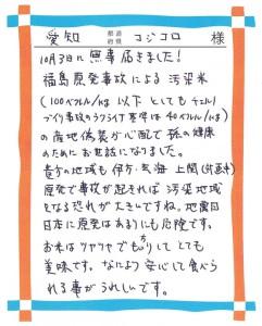 愛知県sコジコロ